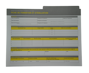 Counterbalanced Forklift Compliance Package French Record Sheet